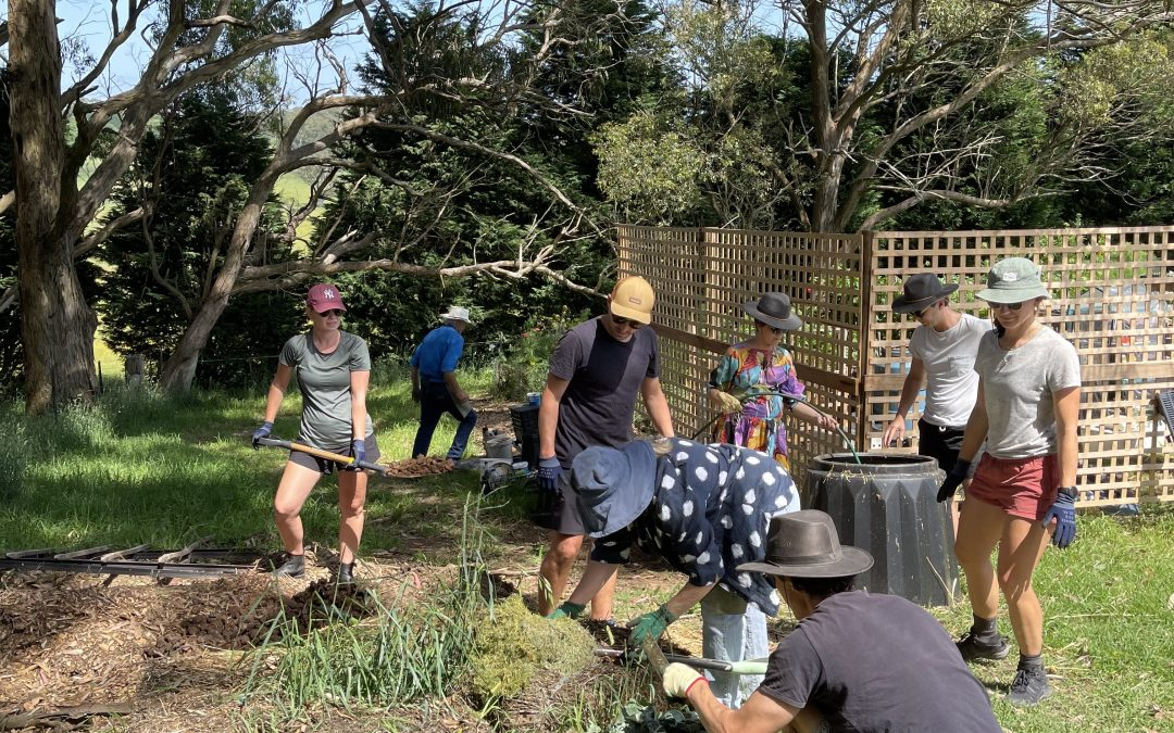 Home Grown Retreat: An Introduction to Permaculture