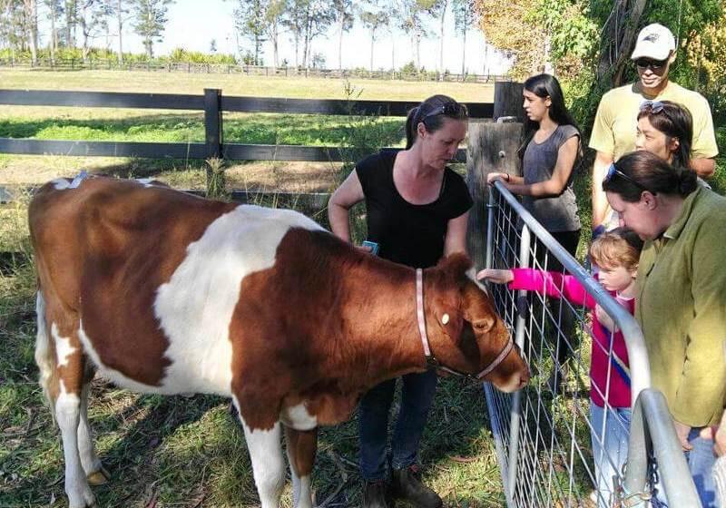 Grace Springs Farm tour