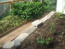 Plants, vermicompost walkway, granite stone wall/seat.