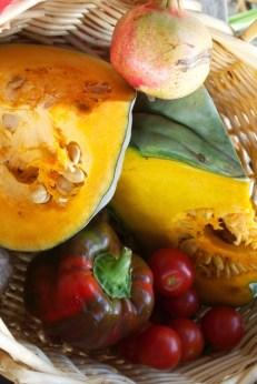 Pumpkin, capsicum, tomato and pomegranate