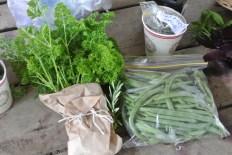 beans_herbs