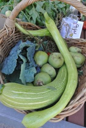squash_pears