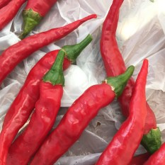 hot_chillies