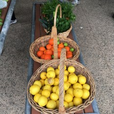 citrus_and_greens