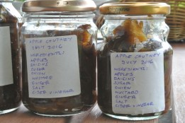 apple_chutney2
