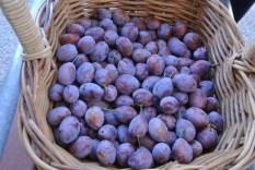 sugar_plums
