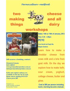 Say CHEESE! Workshop in Townsville - cheese and kefir making workshop