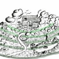 Getting Into The Permaculture Zone