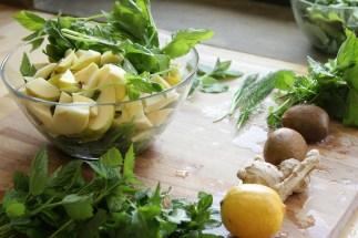Szczególnie wczesną wiosną, gdy mało jest warzyw, jem z ogrodu wszystko co zielone, tutaj widać świeżo zebrane: krwawnik, pokrzywę, podagrycznik, miętę, oraz kupione w sklepie, jako dodatki uzupełni jace kiwi, imbir i cytrynę.