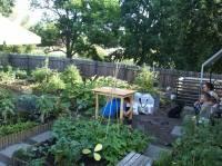 Wspólny Ogród 3