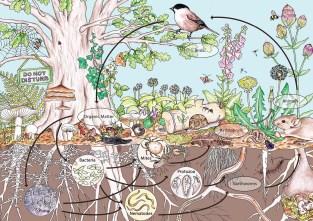ekosystemowe zasady projektowania