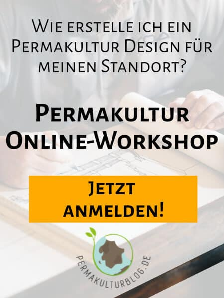 Permakulturblog Online Workshop
