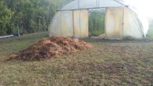 fumier tas serre automne preparation jardin