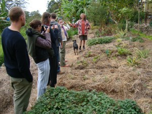 Course at Permaculture Research Institute Sunshine Coast