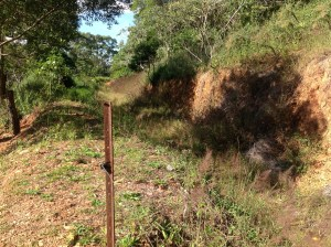 This is the top large swale at the Permaculture research Institute Sunshine Coast, which also functions as an overflow for the main dam.