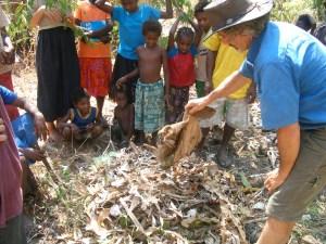 Compost pile in Bareo, Vanuatu permaculture