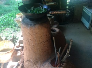 Chinese greens on the Maungaraeeda rocket stove