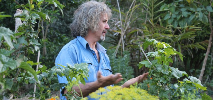Accredited Permaculture teacher Tom Kendall