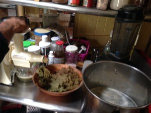 Juice, pulp and the pot of Yacon juice to go onto the woodstove to make Yacon syrup at PRI Sunshine Coast