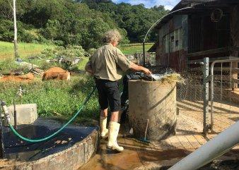 Tom feeding our homemade biogas bio-digester