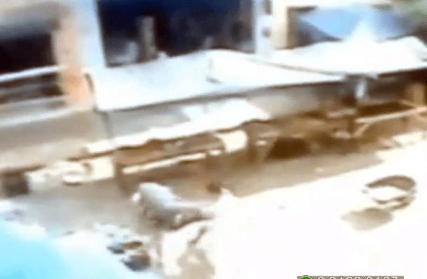 FLAGRA: Homem escapa da morte em Vicência (PE)