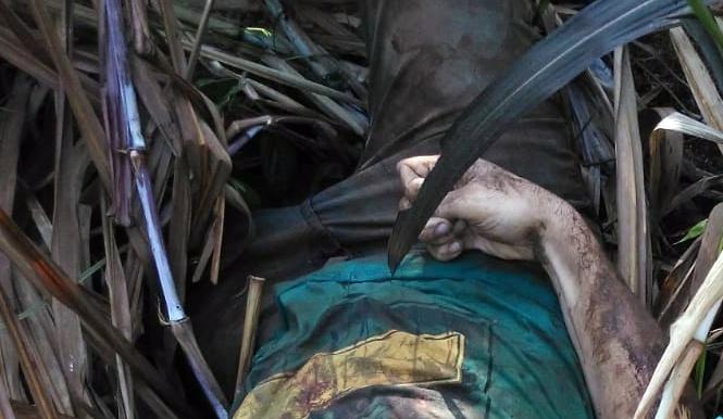 Homem assassinado em vegetação do Sítio Serra Verde em Cupira