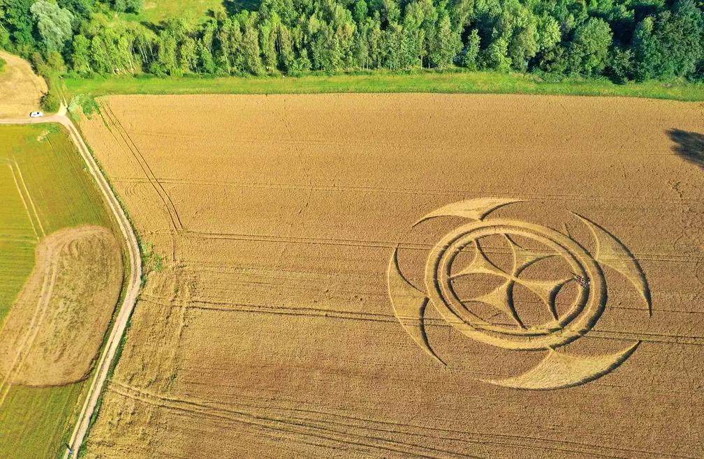 Símbolo misterioso surge em plantação de trigo e ganha repercussão mundial
