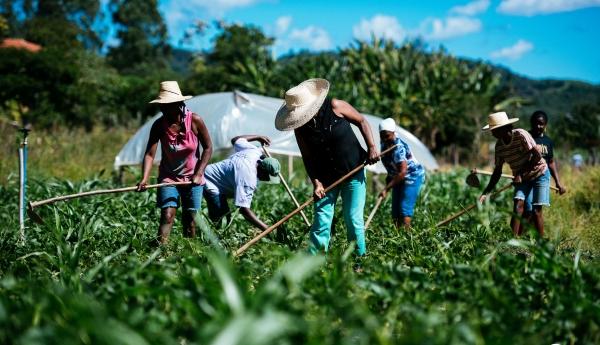 Nove municípios se unem para fortalecer agricultura familiar e agroecologia no Pajeú