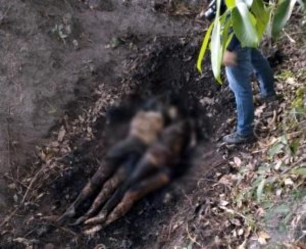 Duas mulheres mortas são encontradas enterradas em Bom Conselho
