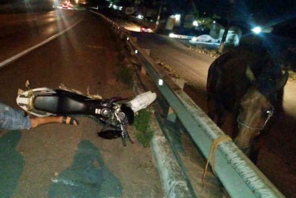 Gravatá: homem que morreu em acidente na BR-232 bateu moto em cavalo solto na pista