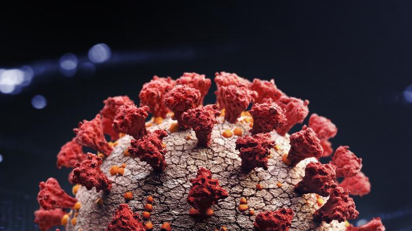novo coronavirus