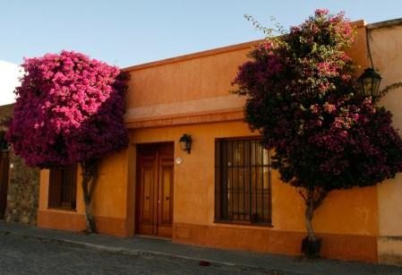 Kolonialna zabudowa i kwiaty to charakterystyczne cechy portugalskiej części Colonii. (Fot. Kuba Fedorowicz)