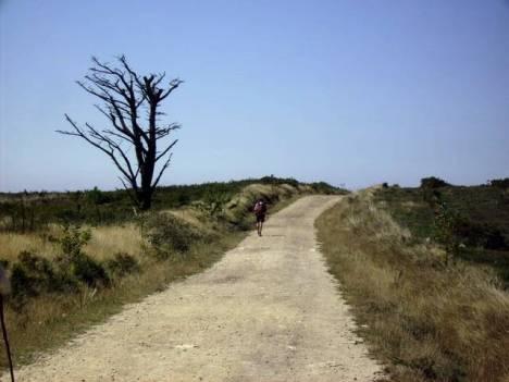 Samotny pielgrzym na drodze Świętego Jakuba w Hiszpanii