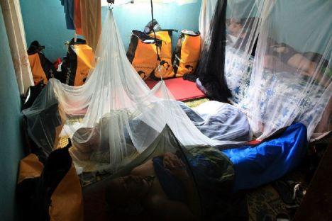 Profilaktyka,w postaci stosowania repelentów i moskitiery, to podstawa. (Fot. Piotr Sudoł)