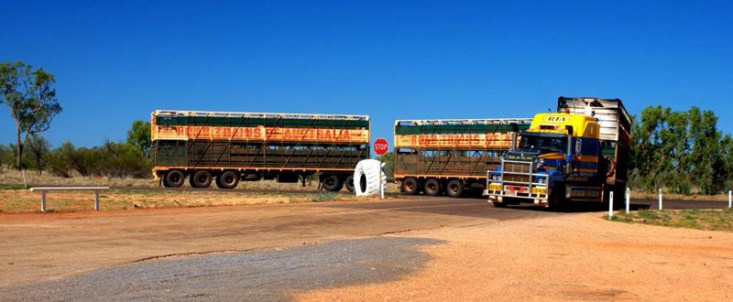 Road train w Australii