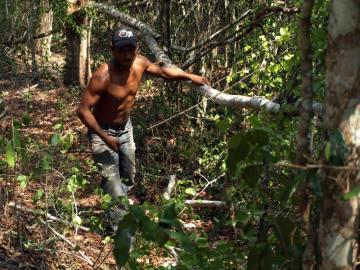 Dżungla w Gwatemali