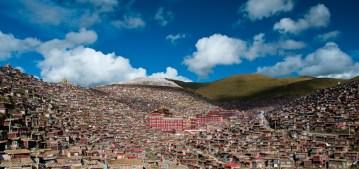Ośrodek kształcenia buddyzmu w Chinach