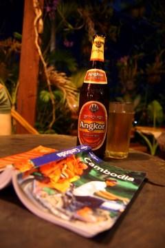 Lonely Planet - wyrocznia dla backpackera. (Fot. Ewa Serwicka)