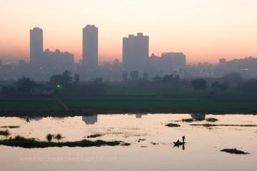 Nil w Kairze