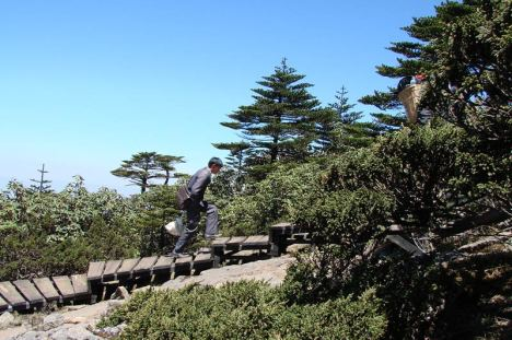 Śnieżna Góra Jiaozi, Yunnan, Chiny. Turysta na szlaku