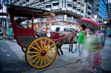 Kalesa - popularny środek transportu we wschodniej Azji