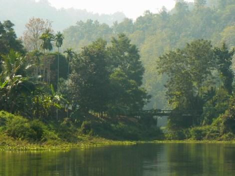 Bujna roslinnosc na wyspie na jeziorze Kaptai.