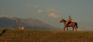 Koń przestrzeń Kazachstan