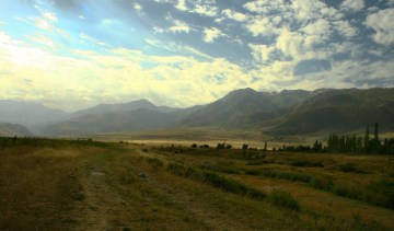 Konie na kazachskim stepie