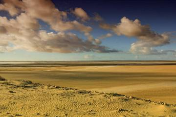 Sahara Zachodnia - uroki pustyni