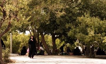 Piknik z Irańczykami