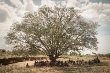 Wielkie drzewo w Afryce, pod którym spotykaja się mężczyźni