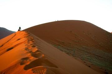 Temperatura piasku na pustyni jest przerażająca - zdjęcia z Afryki