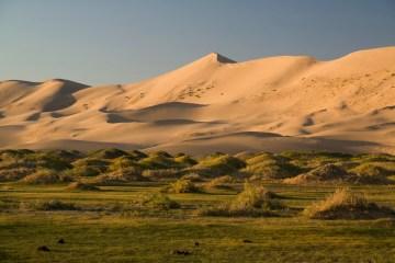 Zdjęcia z pustyni Gobi