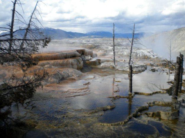 Wodne tarasy w parku Yellowstone - foto